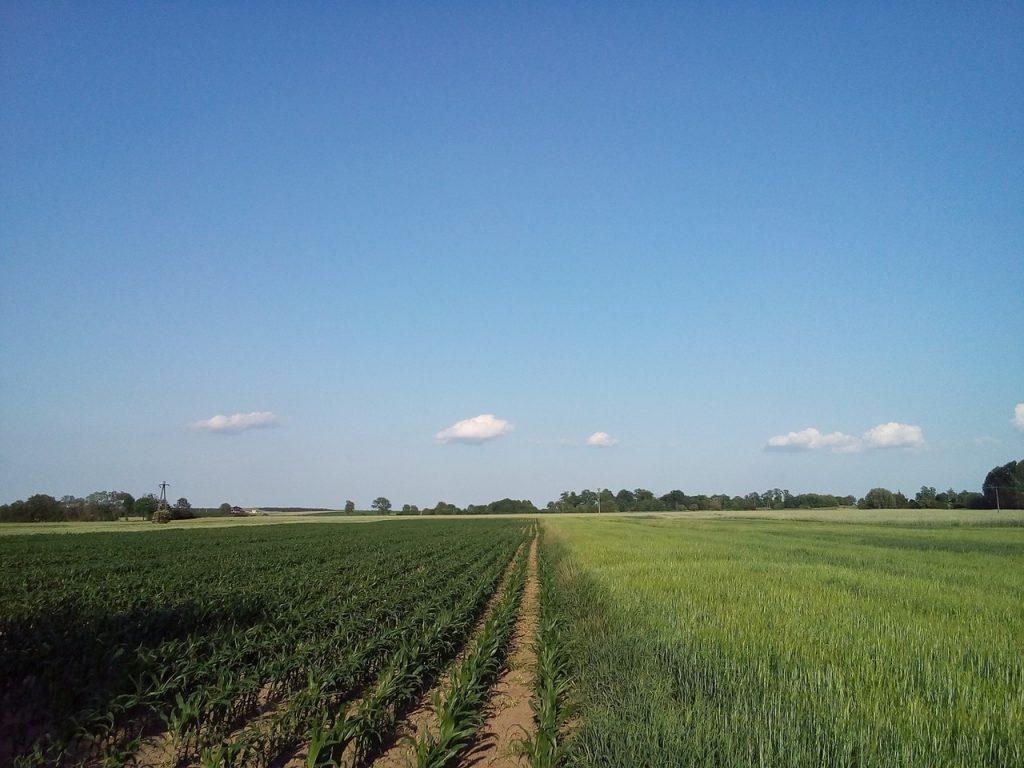 investir dans les terres agricoles